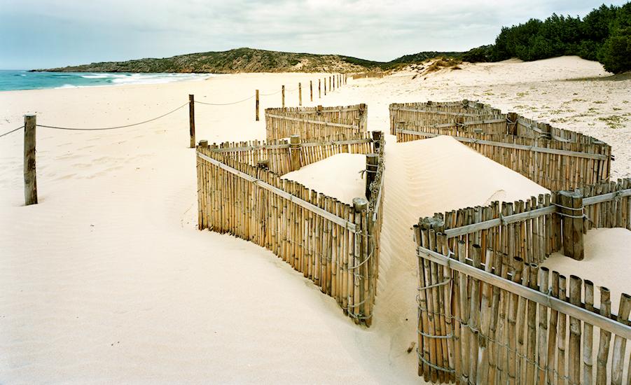 Spiaggia di Su Giudeu - Nuclei di innesco per la formazione delle dune embrionali